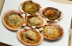 scallops au gratin Stock Photo