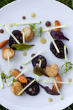 Scallops and black sausage Stock Photography