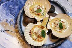 Scallops on blue plate with lemon. On a blue background Stock Images
