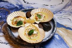 Scallops on blue plate with lemon. On a blue background Royalty Free Stock Photography