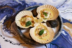 Scallops on blue plate with lemon. On a blue background Stock Image