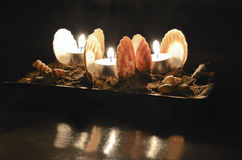 Scallops and candles Royalty Free Stock Image