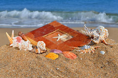 Scallops, clams and an old album on the beach sand Stock Photography