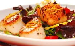 Scallops com uma salada fresca Foto de Stock