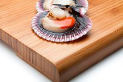 Scallops fresh and raw. Scallops fresh, raw and clean on wooden board Stock Photography
