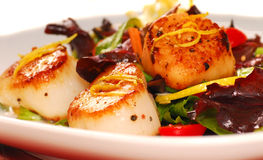 Scallops with a fresh salad Stock Photo
