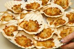 Scallops gratin au Стоковое Фото