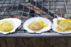 Scallops on the grill Stock Image