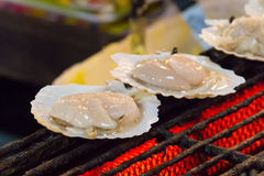 Scallops on the grill Royalty Free Stock Photos