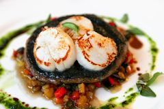 Scallops on Mushroom Dish Royalty Free Stock Images