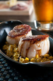 Scallops over fresh corn Royalty Free Stock Photos