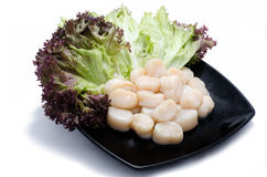 Scallops with salad on black plate. Deliciously Stock Photo