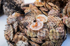 Scallops for sale at the Rialto fish market - Venice, Italy, Europe, 2016 September. Scallops for sale at the Rialto fish market - Venice, Italy Stock Photos
