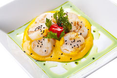Scallops. Sea scallops with sauce on a white plate royalty free stock image