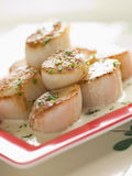 Scallops Seared com molho oco do creme e da erva Foto de Stock Royalty Free