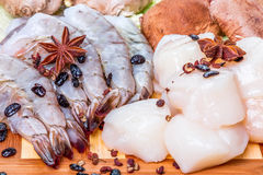 Scallops and shrimps Stock Images