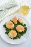 Scallops with spinach Royalty Free Stock Images