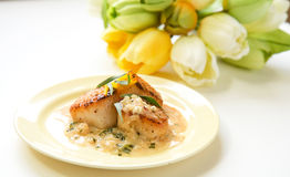 Scallops in tarragon  cream sauce Stock Image