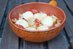 Scallops with tomatoes and fennel Royalty Free Stock Image
