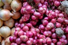Scalogno nel mercato, il materiale originale dell'alimento immagine stock libera da diritti