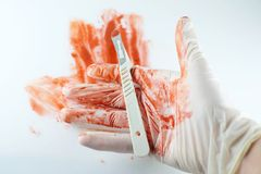 The scalpel in blood and hands of the doctor Royalty Free Stock Image