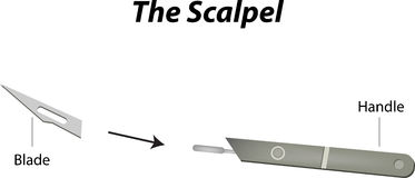 The Scalpel Stock Photography