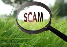 Scam. Magnifying glass with the word scam on grass background. Selective focus Royalty Free Stock Photography