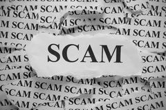 Scam. Torn pieces of paper with the word Scam. Black and White. Close-up Royalty Free Stock Photo