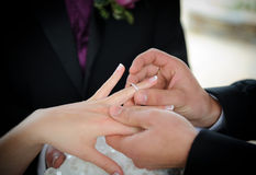 Scambio di anelli di cerimonia nuziale Fotografia Stock