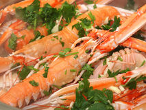 Scampi Royalty Free Stock Photography