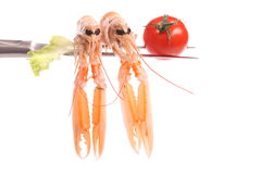 Scampi on a fork Stock Images
