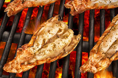 Scampi on grill Stock Images