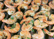 Scampi on grill Royalty Free Stock Images