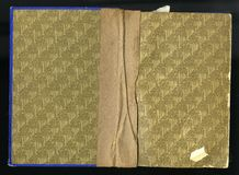 Scan the flyleaf of an old book, yellow brown, with dense and intricate floral pattern. Stock Photo