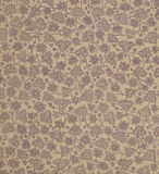Scan the flyleaf of an old book, yellow-gray-brown, with dense and intricate floral pattern. Royalty Free Stock Images