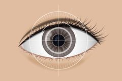 Scan technology the retina. Brown eyes vector illustration. Modern equipment Royalty Free Stock Image