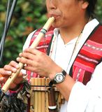 Scanalatura di bambù Fotografia Stock