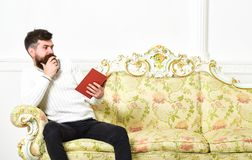 Scandalous bestseller concept. Guy reading book with amazement. Man with beard and mustache sits on baroque style sofa. Holds book, white wall background royalty free stock photos