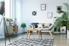 Room with wooden rustic furniture. Scandi carpet in classic living room with plants, posters and wooden rustic furniture Stock Photo