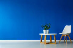 Scandi style designed day room. And modern, stylish furniture with plants Stock Photography