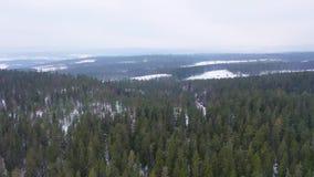 Scandinavië in de lengte van de sneeuwhommel stock videobeelden