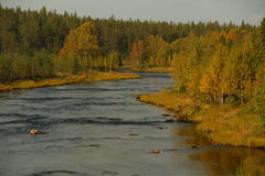 Scandinavia, Lapland, Autumn, River, North Royalty Free Stock Image