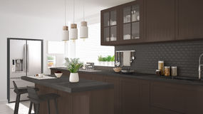 Scandinavian classic kitchen with wooden and brown details, mini Stock Photography