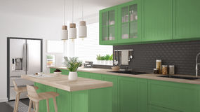 Scandinavian classic kitchen with wooden and green details, mini Stock Image