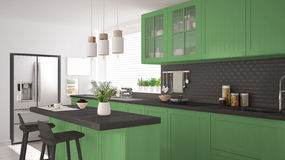 Scandinavian classic kitchen with wooden and green details, mini Royalty Free Stock Photo