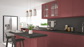 Scandinavian classic kitchen with wooden and red details, minima Royalty Free Stock Photography
