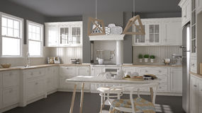 Scandinavian classic white kitchen with wooden details, minimali Royalty Free Stock Photos