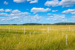Scandinavian countryside in summer Royalty Free Stock Photography