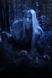 Scandinavian girl in the night forest Royalty Free Stock Photo