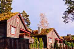 Scandinavian houses. Typical scandinavian houses with grass on a roof Royalty Free Stock Photo